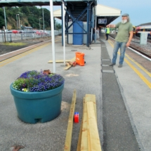 Yeovil Junction Planters (2)